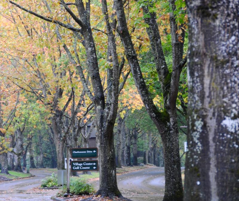 Autumn-Charbonneau-New-Location